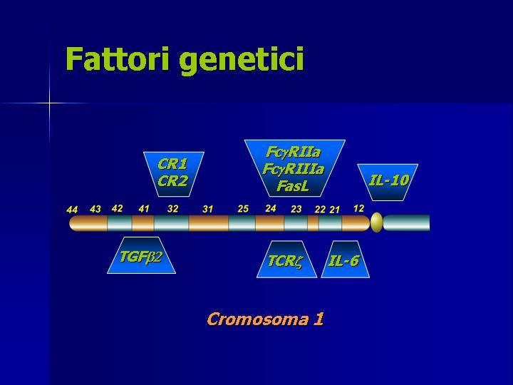 patogenesi3.jpg